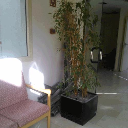 Coordinación de seguridad en fase de ejecución de la renovación parcial de tuberías en el centro de atención especializada Txara II